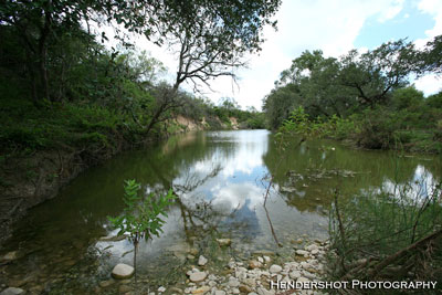 Ranchero creek flowing through the Wil Rehm Pasture at Brushy Hill Ranch. For great South Texas Bowhunting at reasonable prices, check out Brushy Hill Ranch - www.BrushyHill.com Trophy Whitetail hunting at affordable prices.